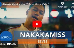 Eevee - Nakakamiss